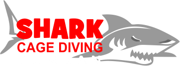 Shark Cage Diving, Durban KZN
